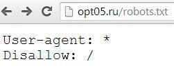 Закрытие сайта от индексации